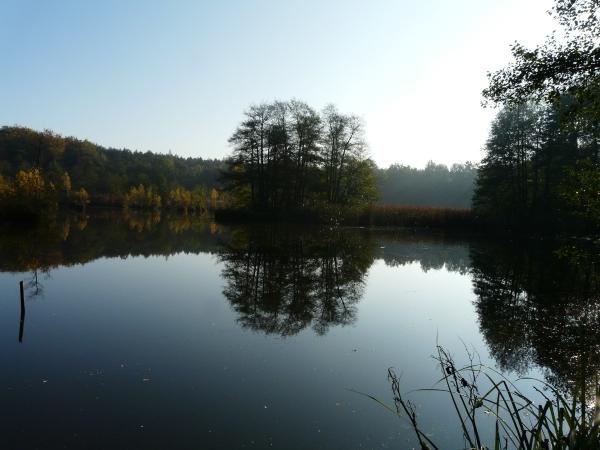 Bild mit Blick auf einen See